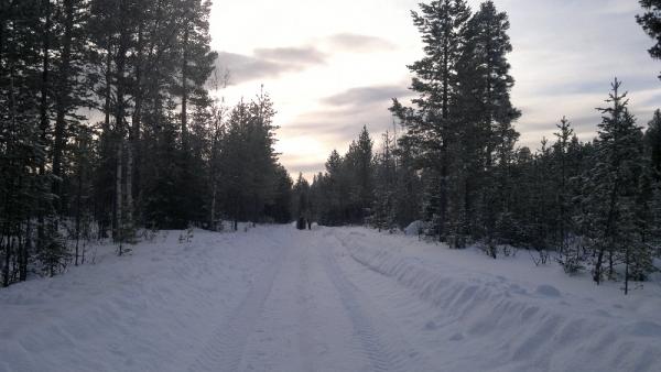 2012-02-17-257