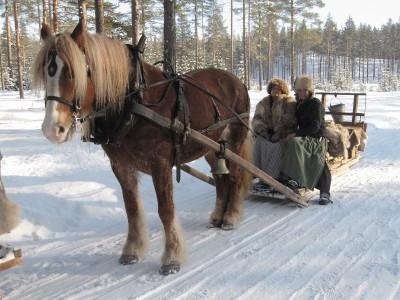 Hesten Brennsæterjinta med kusk Eli Lang-Ree fra Stange og lauskar/jente Grete Hveem fra Løkendalen/Ringsaker. Foto: Karine Bogsti