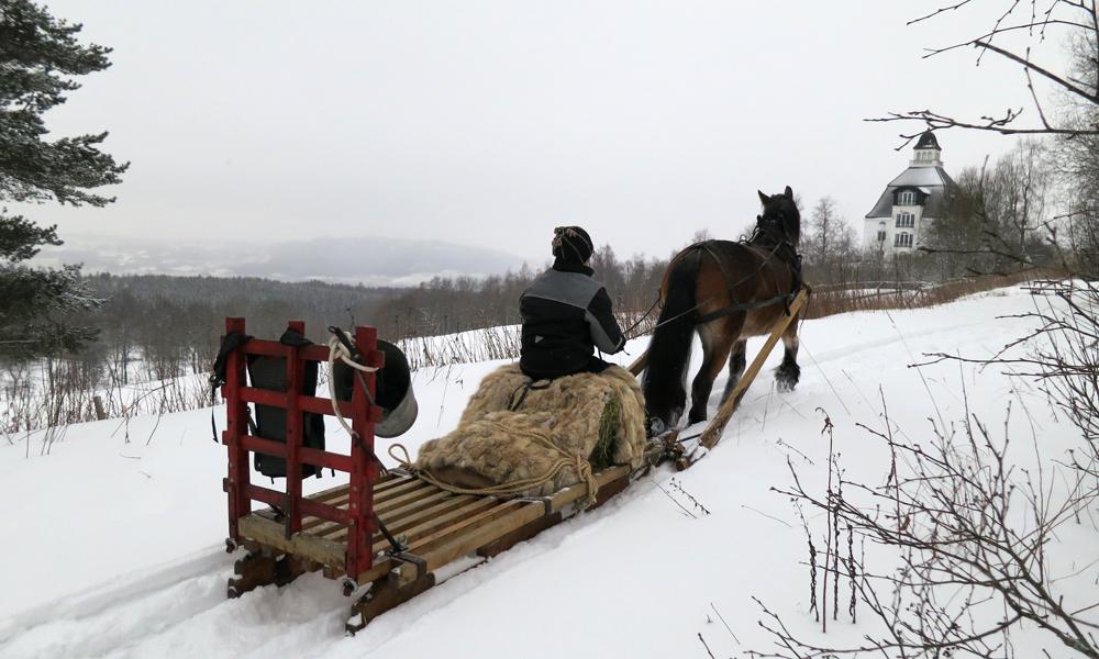 Første snødag i januar, og ingenting å si på utsikten fra Høsbjør. Kuska er derimot fullt konsentrert om prøvekjøringa. Her på tur i et lita sløyfe hvor det ble sjekket hvordan de travet i vei, og hvor god kusken er til å kjøre på trange steder med hest og slede (mellom kjegler). Foto: Karine Bogsti