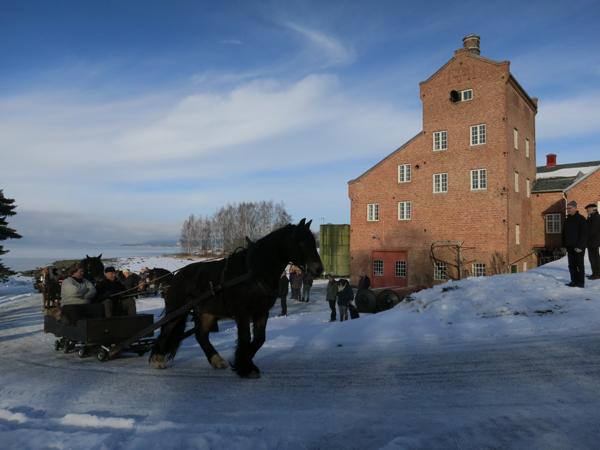 Romedalsprinsen med Truls og Emil på legger i vei fra Atlungstad. Foto: Karine Bogsti