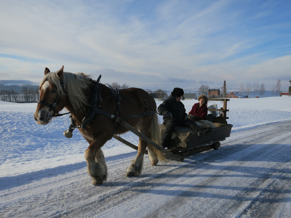 Hesten Gråstein med kusk og turleder Nils Dahlen og Eli Lang-Ree på. Atlungstad og Mjøsa i bakgrunn. Foto: Karine Bogsti