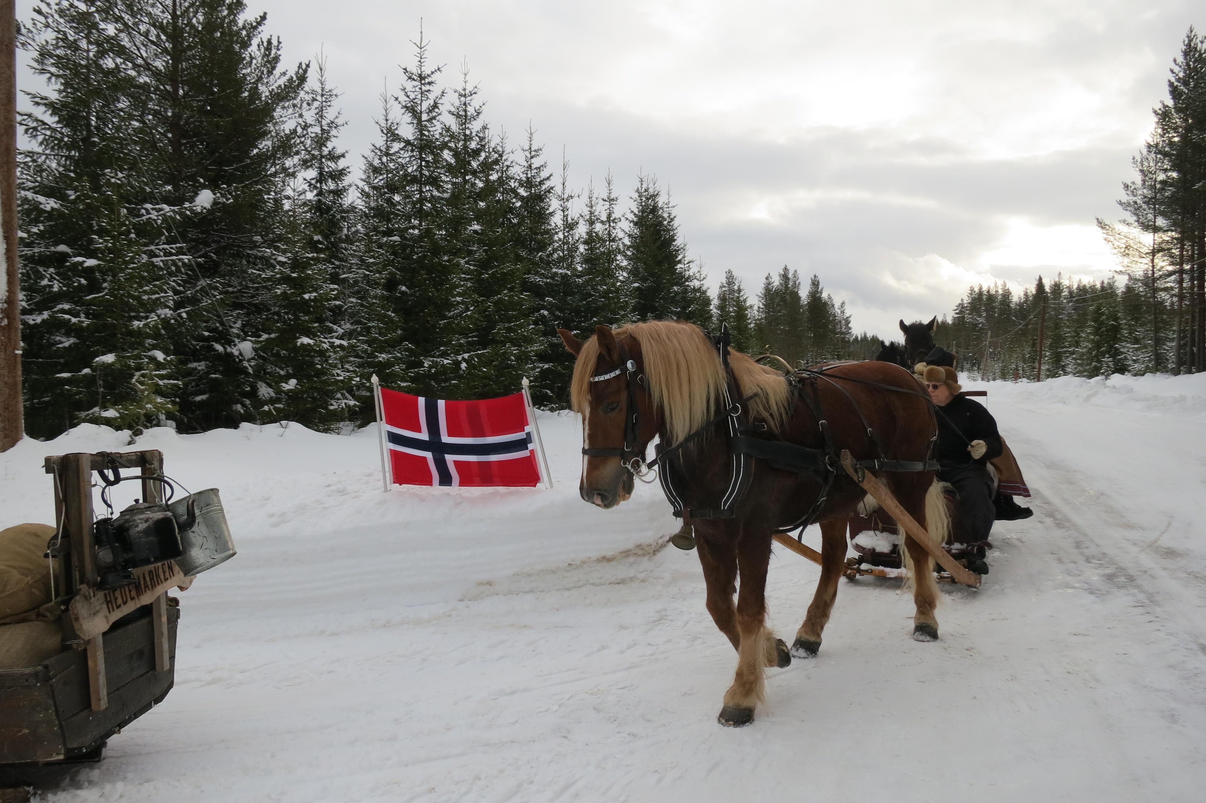 Veldig hyggelig å bli møtt med flagging for oss. Her på veg mot Trønnes på Holøya, Atndalen. Foto: Karine Bogsti