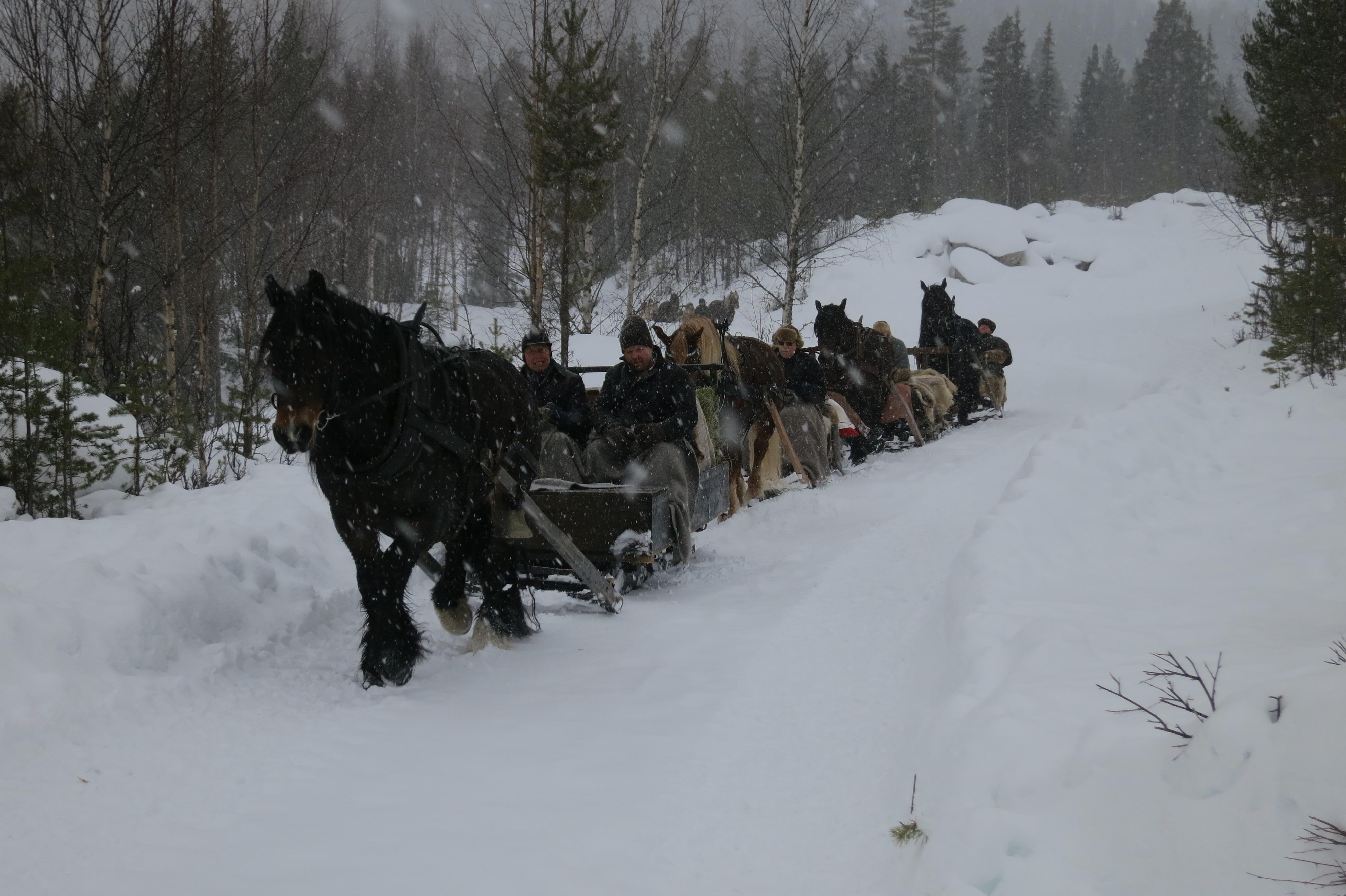 Snøvær. Foto: Karine Bogsti