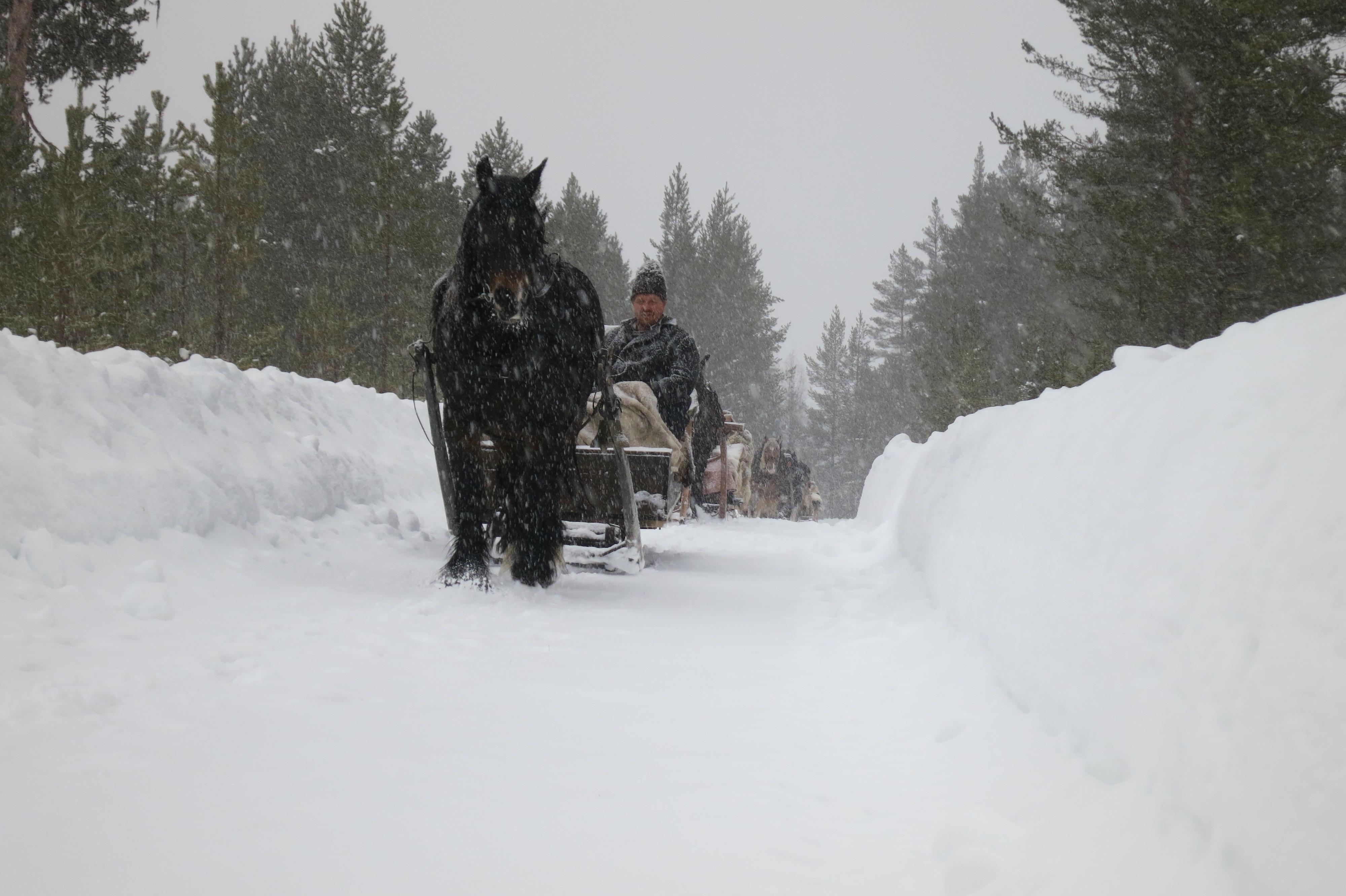 Snøvær. Foto: K. Bogsti