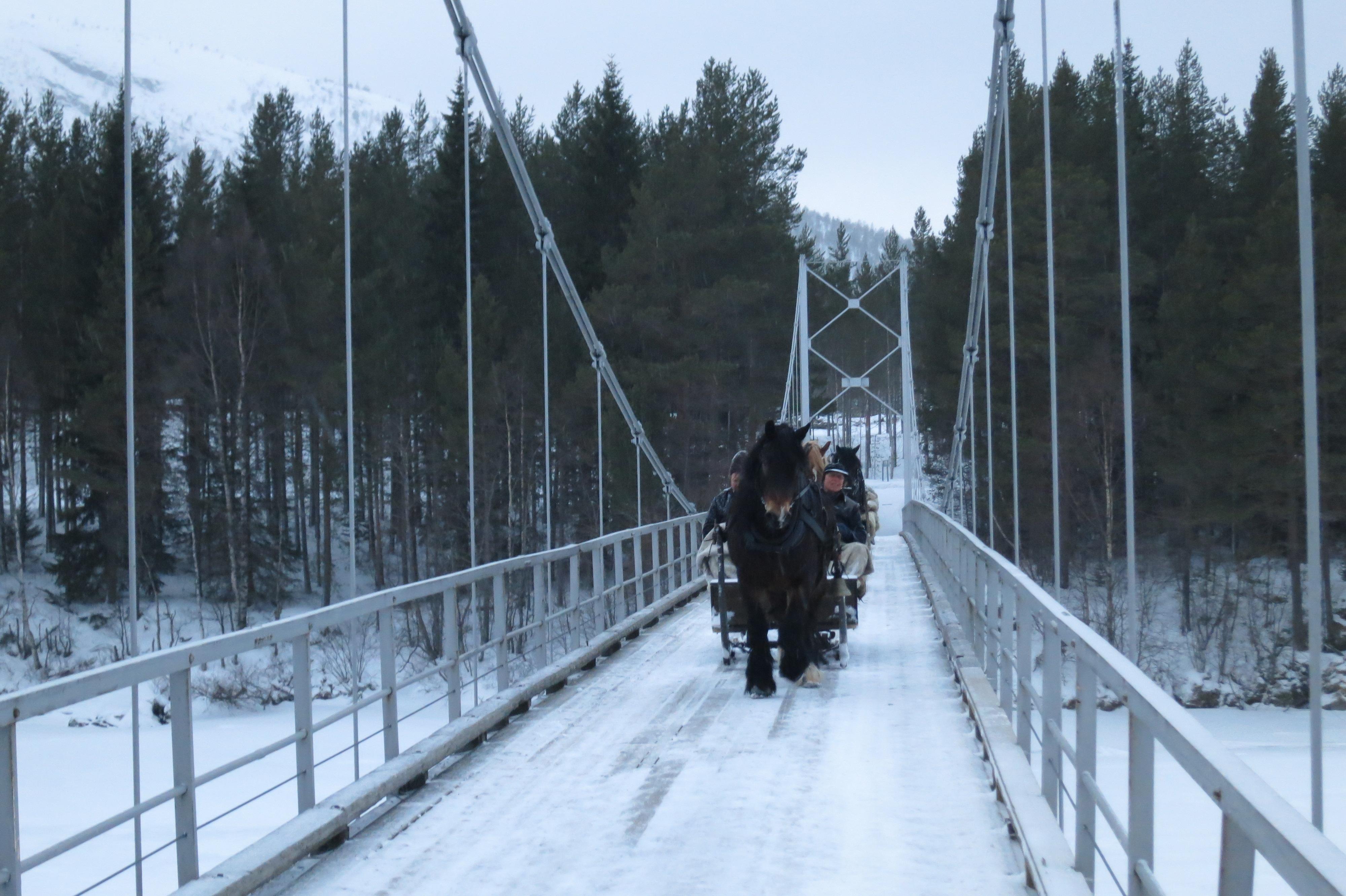Det gynga godt over hengebrua ved Kveberg. Foto: Karine Bogsti