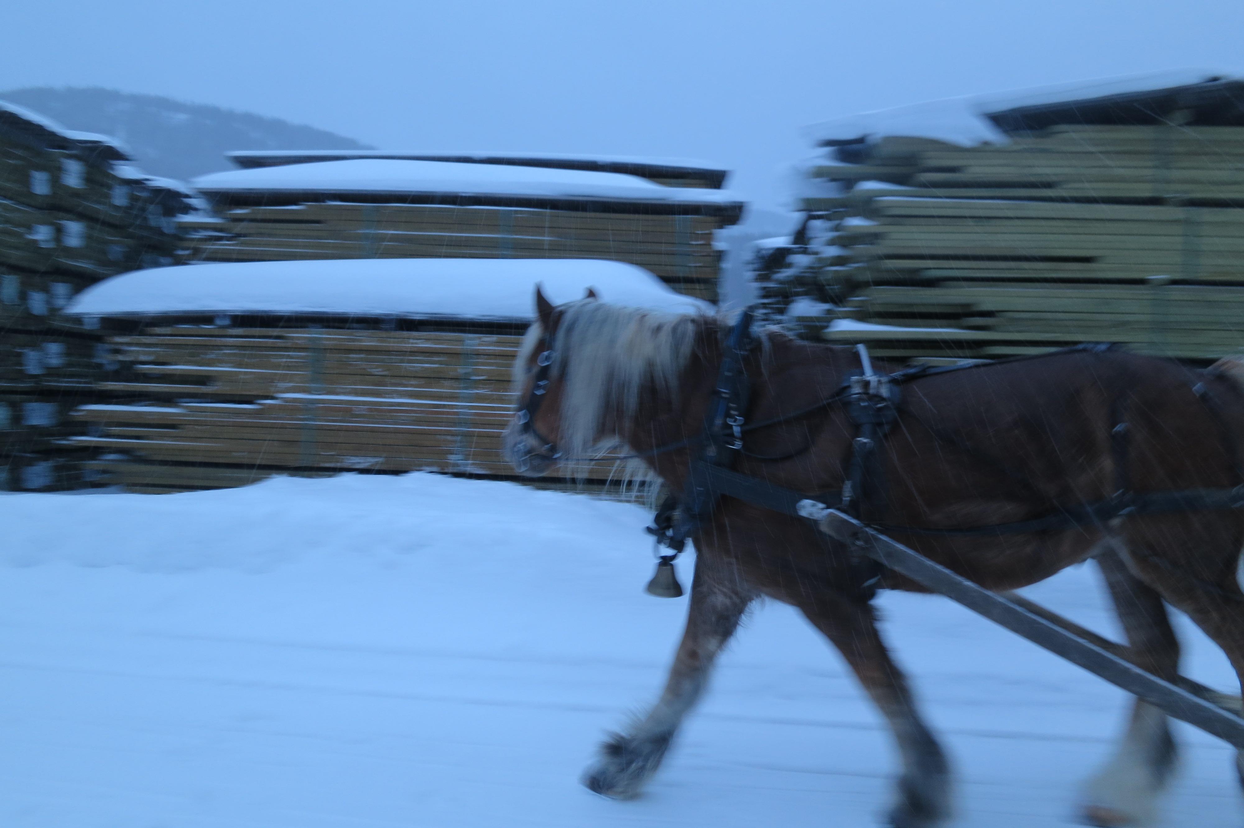 Her var det mye plank. Passering ved saga på Alvdal. Foto: Karine Bogsti