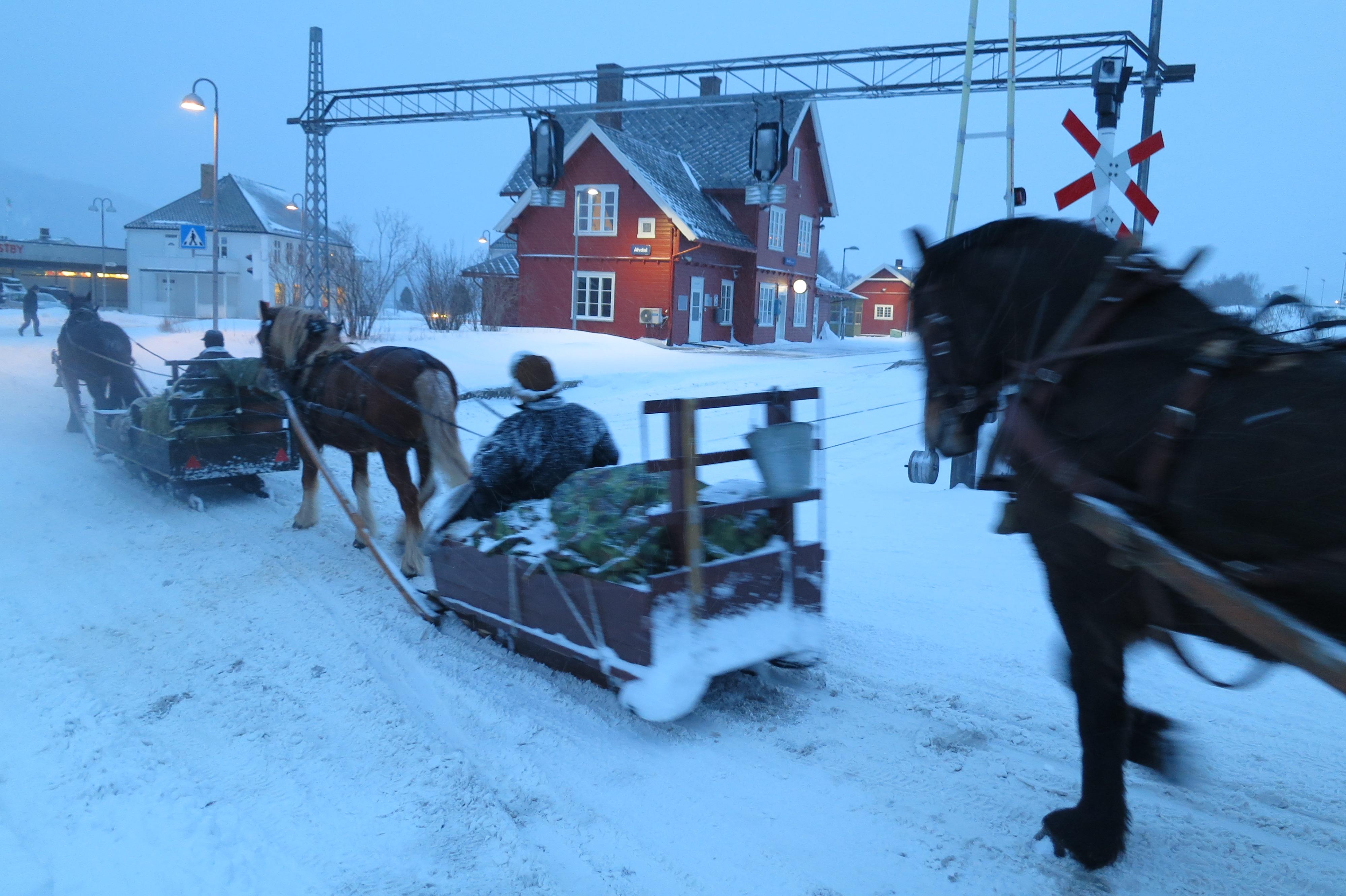 Her gjelder det å komme seg kjapt over. Passering av toglinja på Alvdal stasjon. Foto: Karine Bogsti
