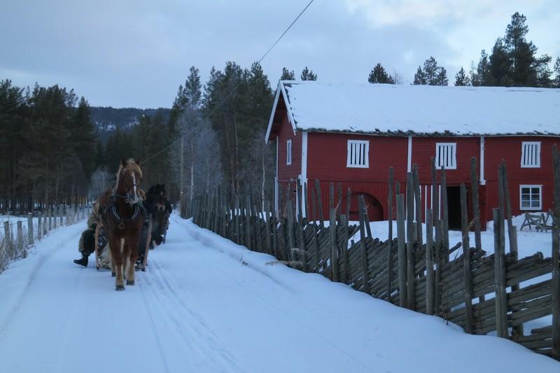 Forbi stallen til hesta på Telneset.  Foto: Karine Bogsti