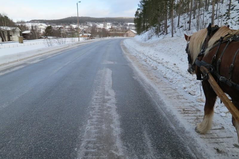En del bar veg i dag også. Her på vei inn mot Tolga. Foto: Karine Bogsti