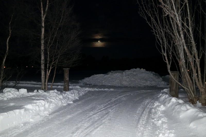 I dag la vi i veg før sola hadde stått opp. Men månen lyste. Foto: Karine Bogsti
