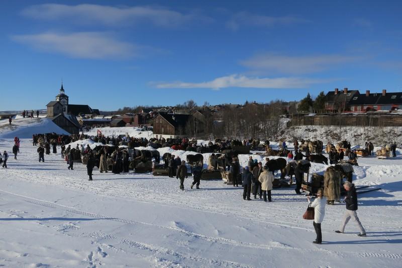 Etter innkjøringa stiller alle hestene opp på Røstplassen, og folk får se hva de ulike har hatt med på sleden. Foto: Karine Bogsti