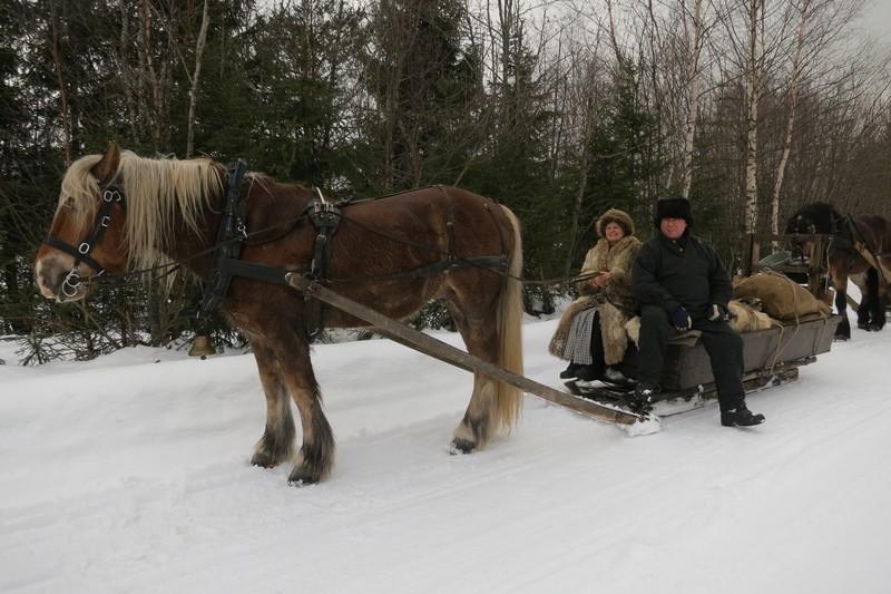 Hesten Gråstein med kusk og turleder Nils Dahlen fra Furnes og hjelpekusk Eli Lang-Ree fra Stange. Foto: Karine Bogsti