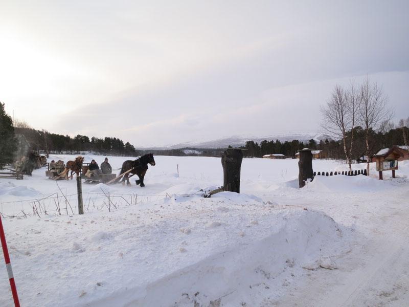 Dagens startet med skikkelig vind og fokk fra Os. Foto: Karine Bogsti