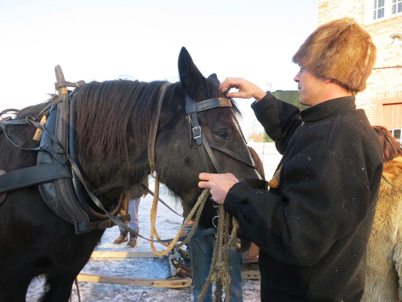 Jøran seler på Guriblessa, klar for tur. Foto: Karine Bogsti