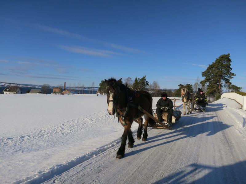 Furnesninger på tur fra Atlungstad; Nils i første sleden. Lasskjørerne her kjørte mot Furnes i dag, og kommer etter lenger opp i Østerdalen. Foto: Karine Bogsti