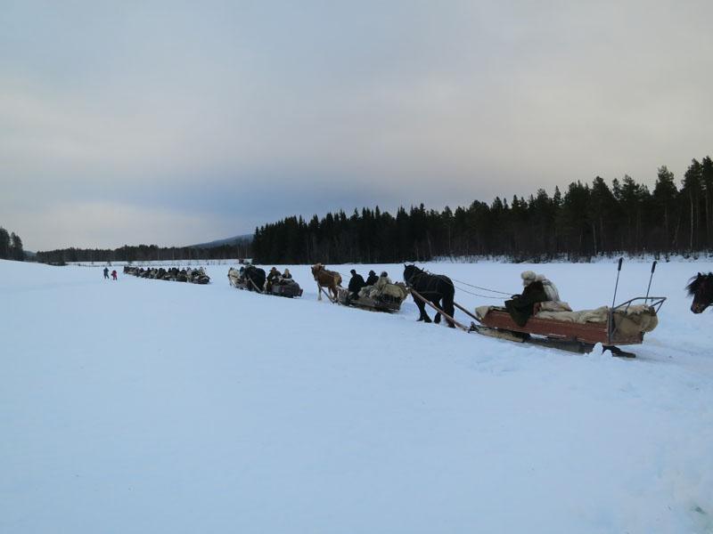 Nord-Østerdal lasskjørerlag er den største laget med asskjørere som kjører til Rørosmartnan. De har ca. 24 ekvipasjer (hest og slede) som er på tur til Røros i år. Her kjører de fra Aaseng på Telneset hvor de har hatt langkvil. Foto: Karine Bogsti