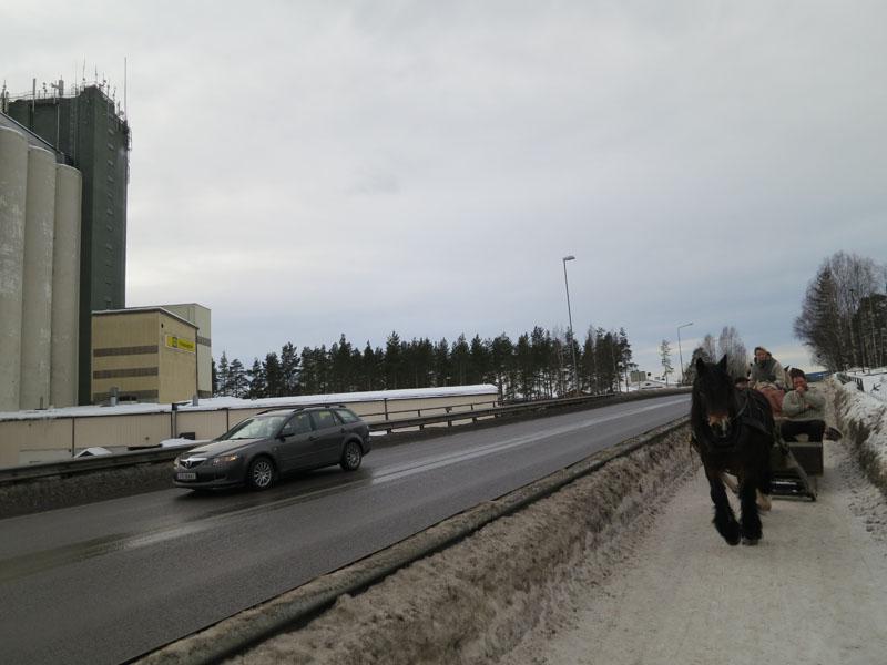 En av dagen kornkamre t.v., og hesta til høgre går på kraftfôr fra nettopp Felleskjøpet. Foto: Karine Bogsti