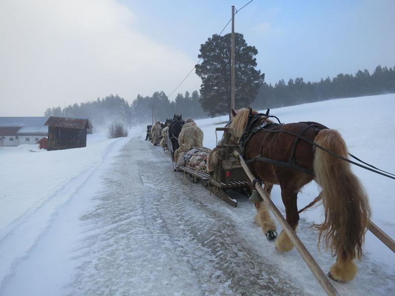 På veg mot Hummelrøsten gard. Foto: Karine Bogsti