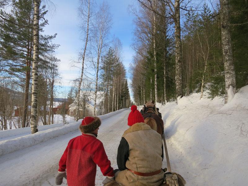 Fin bjørkeale. Foto: Karine Bogsti