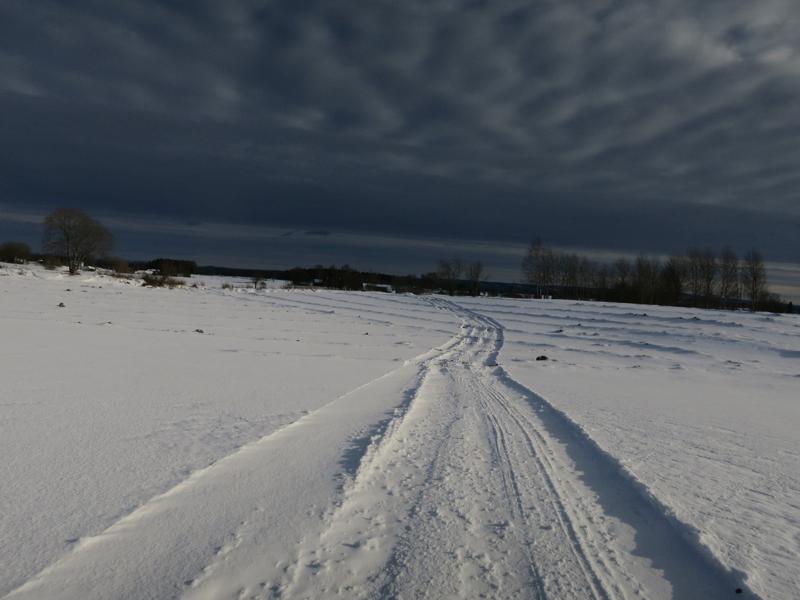 Her går ferden, over grøfta jorder, halmstubbjorder og pløgde jorder. Godt det er bra med snø oppå. Foto: Karine Bogsti