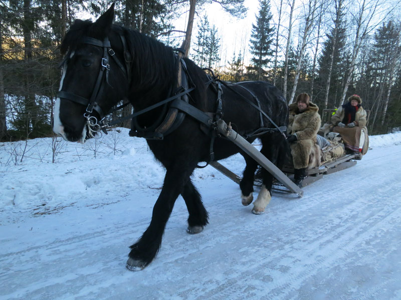 Hesten Guri Blessa med kusk og eier Jøran Lunde, og Mari Bryhni. Foto: Karine Bogsti
