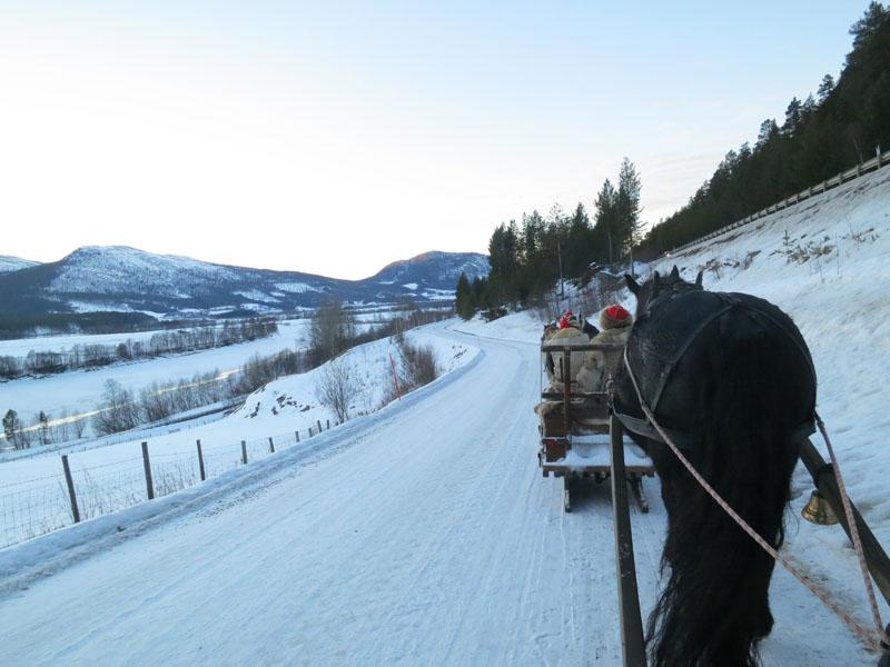 Landskapet åpner seg opp mot Alvdal. Like ovenfor oss til høgre går riksvegen. Foto: Karine Bogsti.