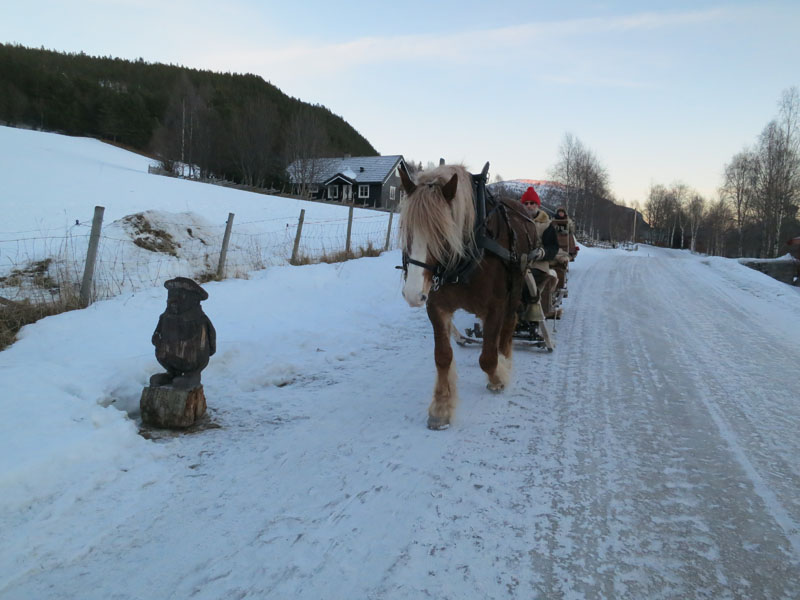N'Ludvig ønsker oss velkommen, men syns nok hesta er litt skumle så han vender ryggen til. Foto: Karine Bogsti