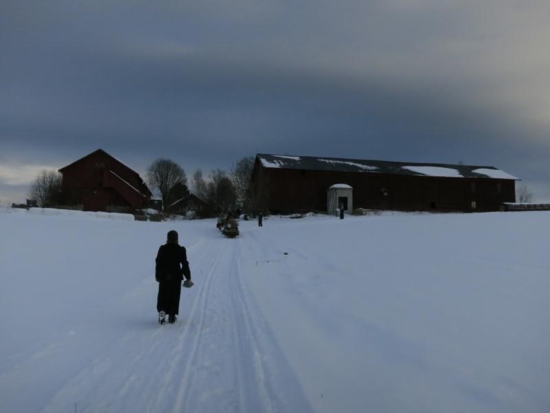 På veg mot Nordbryn i lengst nord i Romedal. Foto; Karine Bogsti