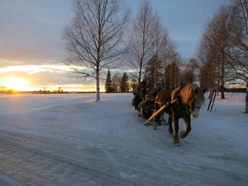 Fint sollys i det vi reiser fra Nordbryn og er på veg fra Romedal til Løten. Foto: Karine Bogsti