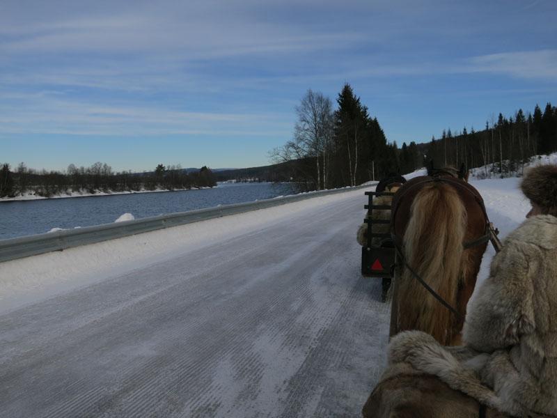 Super kjøreveg med is hele vegen i dag. Glomma har gått åpen fram til ca. Rena, til glede for blant annet noen svaner. Foto: Karine Bogsti
