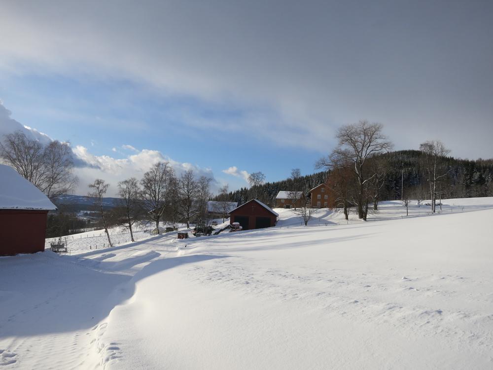 Garden Båberg ligger i Løkendalen i Veldre, ikke langt fra Rudshøgda. Foto: Karine Bogsti