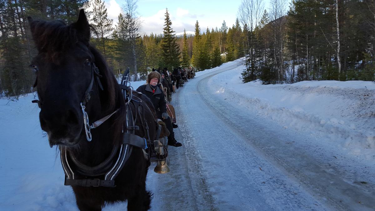 Fint føre og lang rekke. Foto: Karine Bogsti