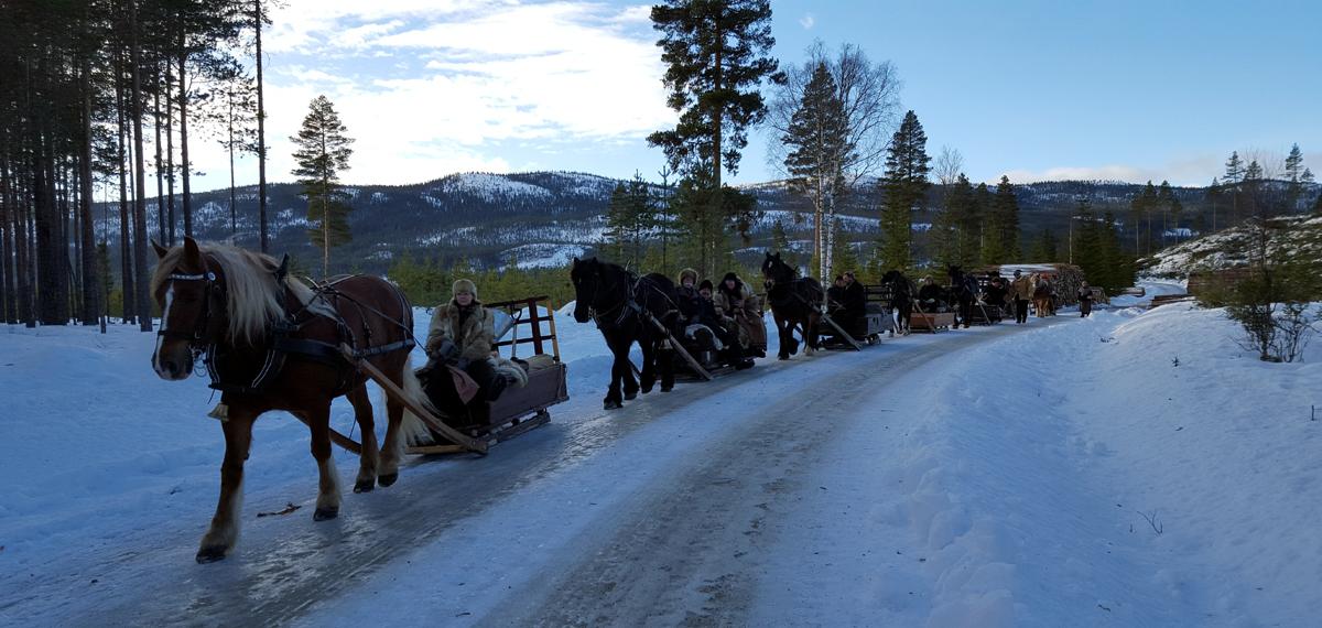 7 ekvipasjer (hest, slede, kusk/lauskarer) utgjorde en nesten dobbelt så lang rekke denne dagen enn i går hvor vi var 4. Foto: Karine Bogsti