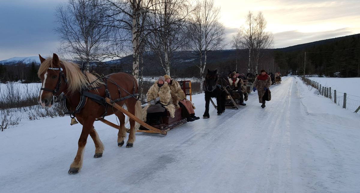 Snart ved vegs ende mot Hanestad/Grøtting. Foto: Karine Bogsti