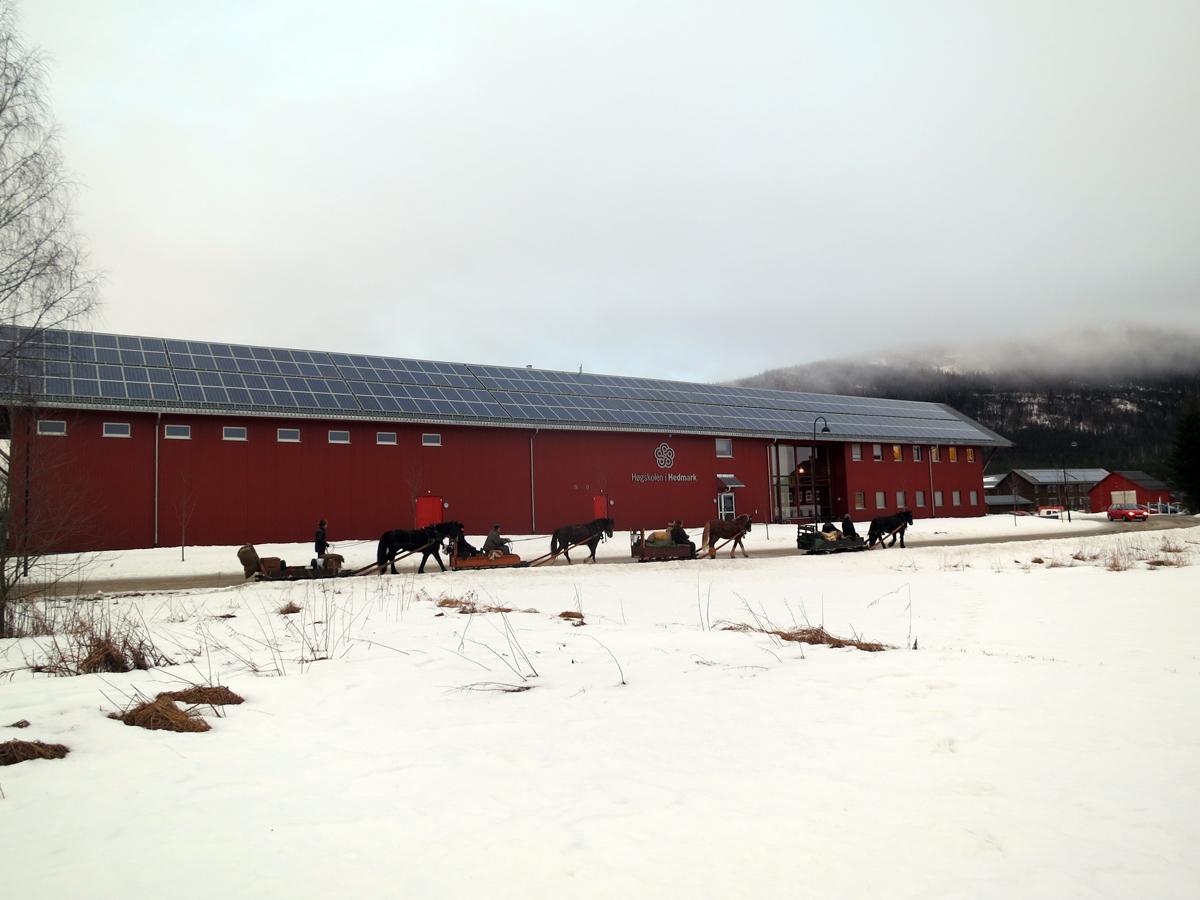 Miljøvennlig framkomstskyss kjører forbi miljøvennlig tak. Nå er vi på Høgskolen i Hedmark på Evenstad. Foto: Karine Bogsti
