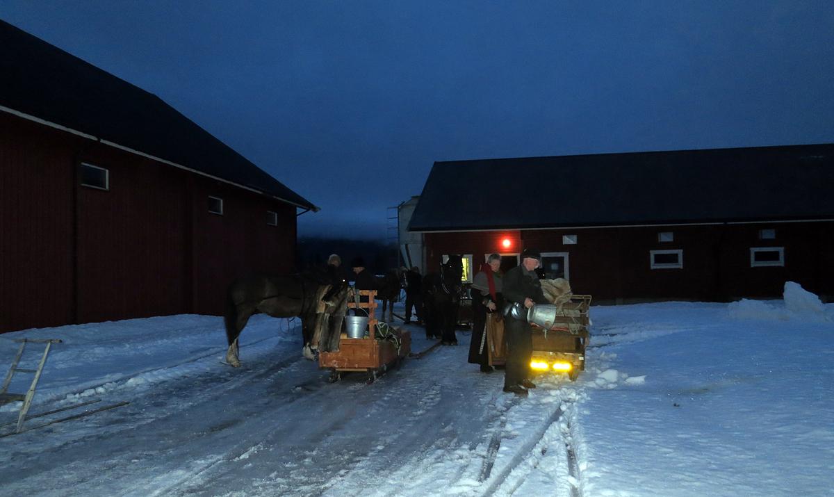 Hesta har hatt ei fin,fin natt i fjøset på Evenstad gard, og hvilt ut godt. Tusen, tusen takk for at vi fikk være her, Guri Svarstad! Foto: Karine Bogsti