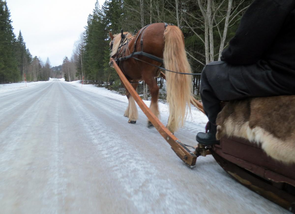 Herlig sledeføre med noen minusgrader og ingen grus fra morgenen av. Foto: Karine Bogsti