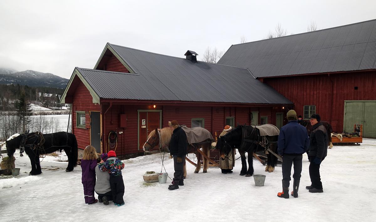 Vatning av hesta på Veslehammeren på Stai. Foto: Karine Bogsti