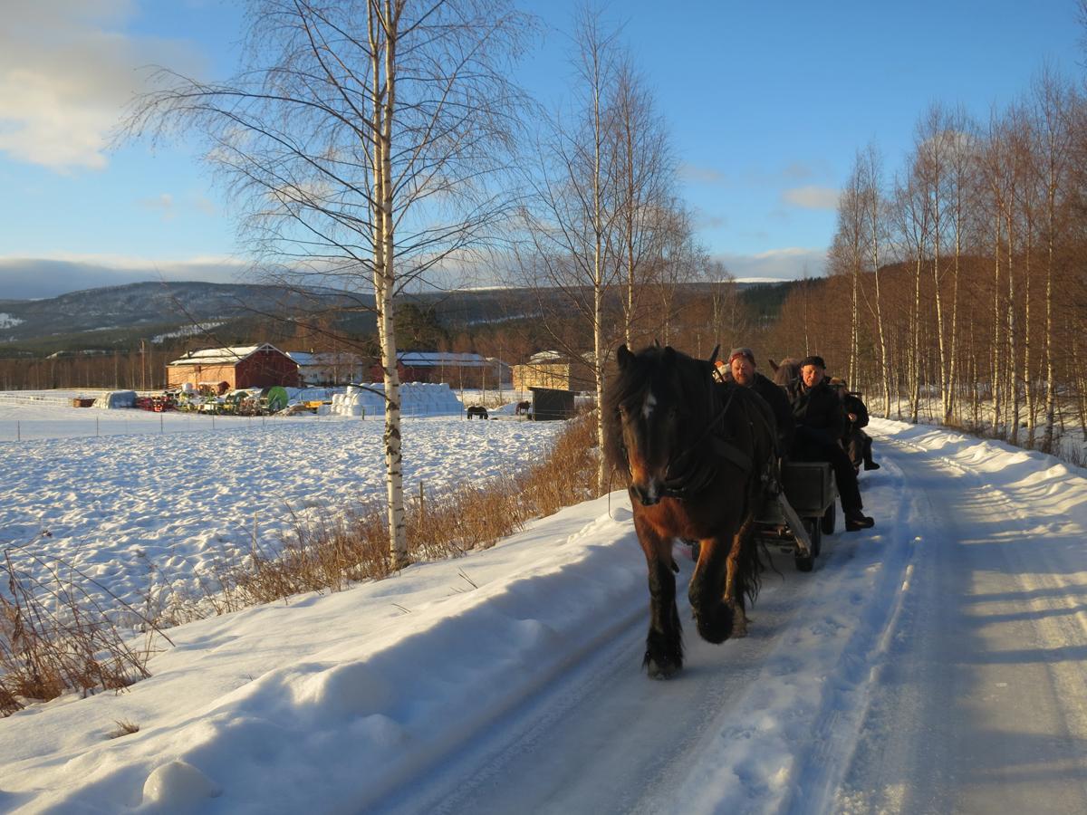 Så er vi igang for dagen, og kjører fra Arnesvea i perfekt vær; solskinn og bare noen minusgrader. Foto: Karine Bogsti