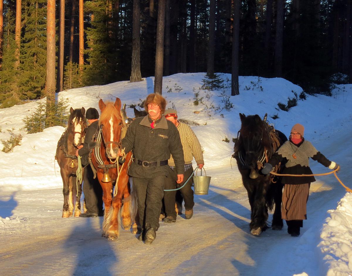 På tur med hesta til der sledene står klare. Foto: Karine Bogsti