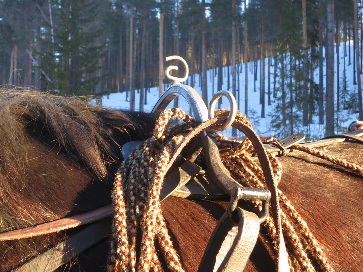 Taumer laget av hestetagl. Funker fint og sitter godt i votten i kaldvær, men blir litt stive i regn. Foto: Karine Bogsti