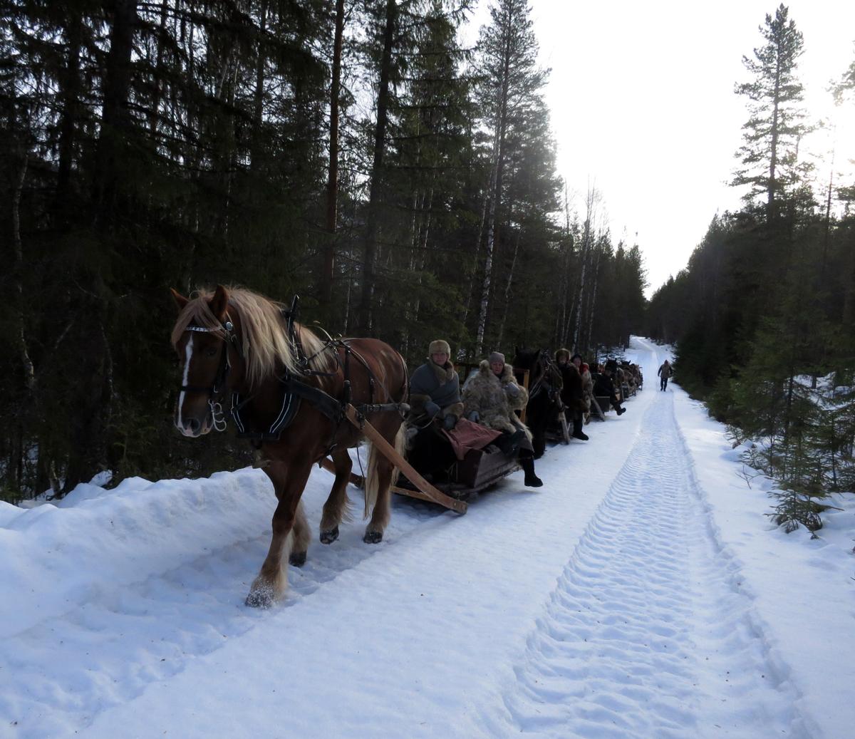 Utrolig herlig å kjøre på rent snøføre med meier. Takk til grunneiere og hjelpere for fine oppkjørte spor! Foto: Karine Bogsti