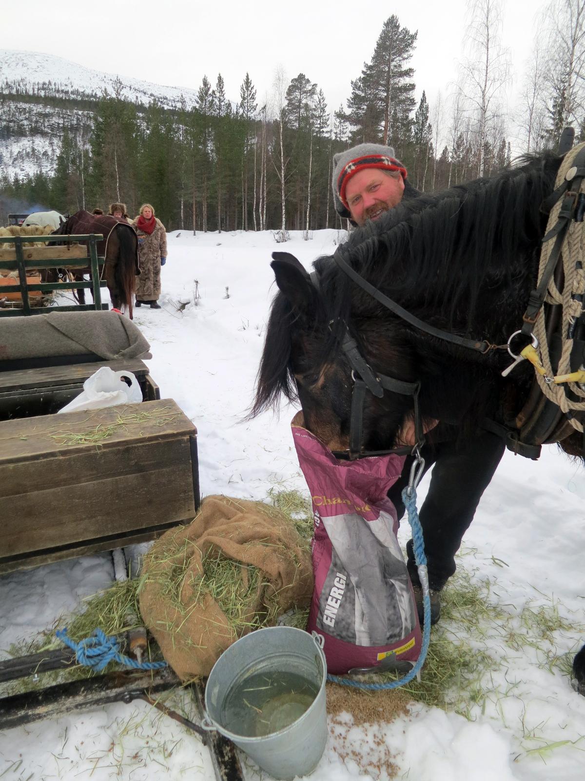 Snadder for hester - Champion kraftfôr fra Felleskjøpet som sørger for at hesta våre går mil på mil, dag etter dag. Foto: Karine Bogsti