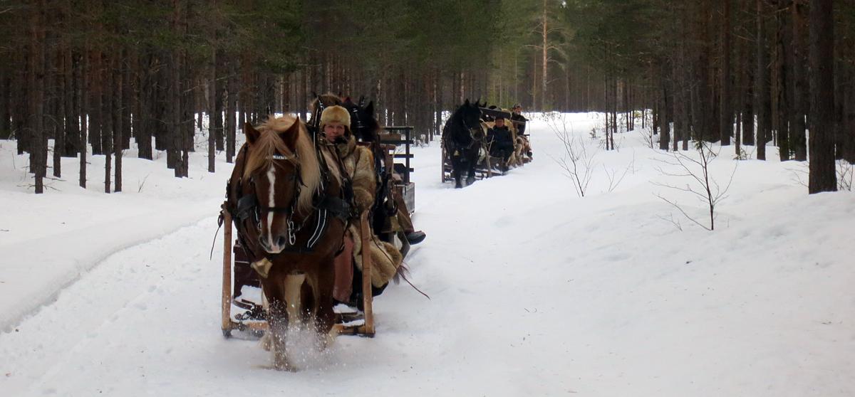 Detgår så snøføyken står foran hesta. Foto: Karine Bogsti