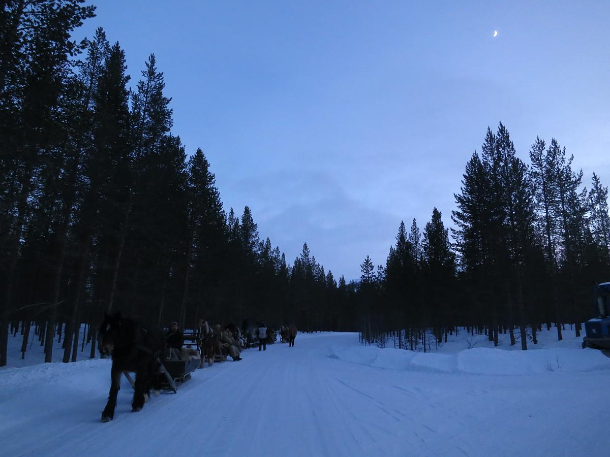 Måneskinn i vente. Foto: Karine Bogsti