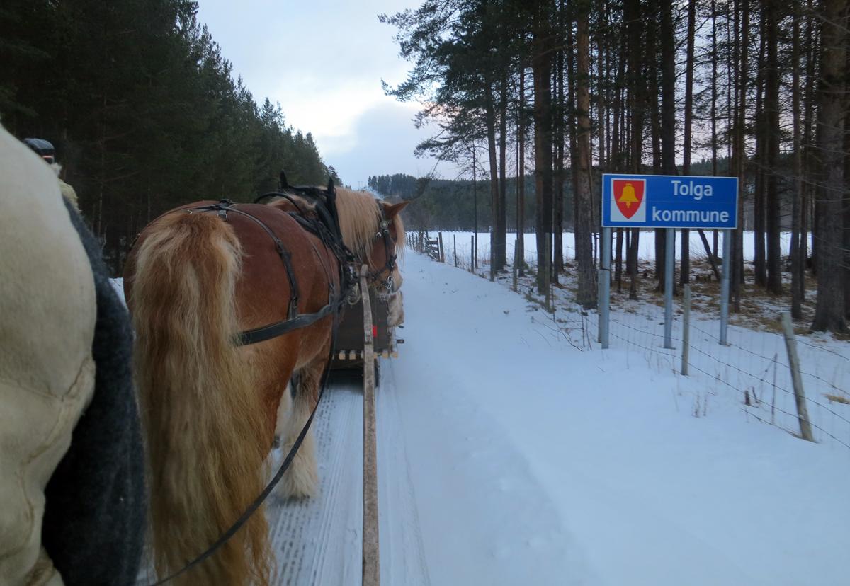 Vi forlater Tynset kommune, og kjører inn i Tolga. Til sammen kjører vi gjennom 11 kommuner på vår ferd: Stange, Løten, Elverum, Åmot, Stor-Elvdal, Rendalen, Alvdal, Tynset, Tolga, Os og Røros.