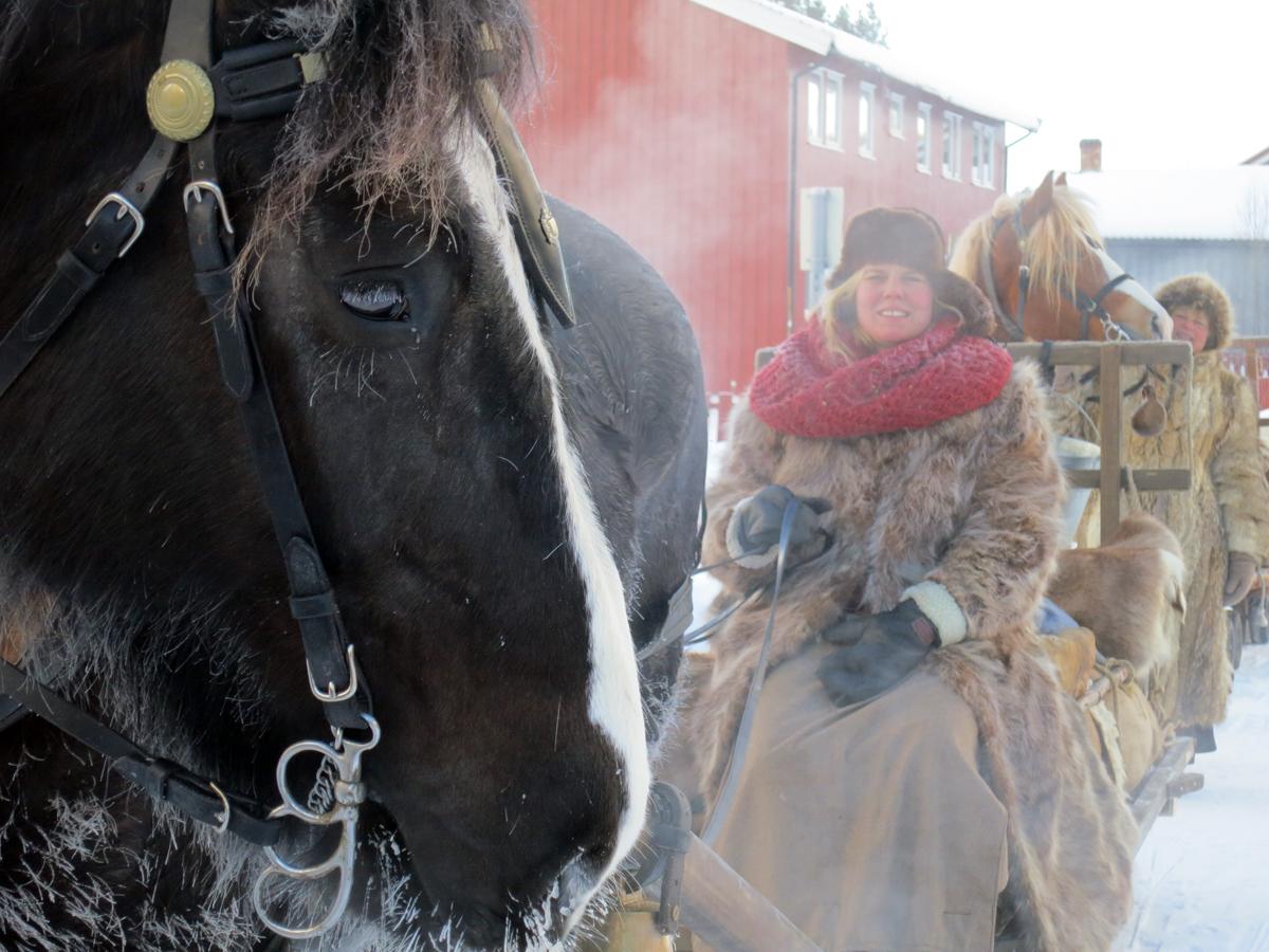 Hesten Guri Blessa og Jeanette i frostrøyk. Foto: Karine Bogsti