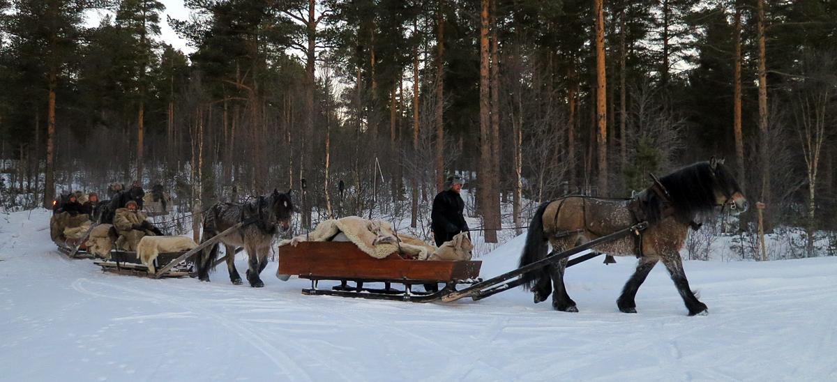 Her krysses våre veier med Fron lasskjørarlag, som har brukt like lang tid på turen som oss. De reiser fra Gudbrandsdalen, og kjører over fjellet. Foto: Karine Bogsti