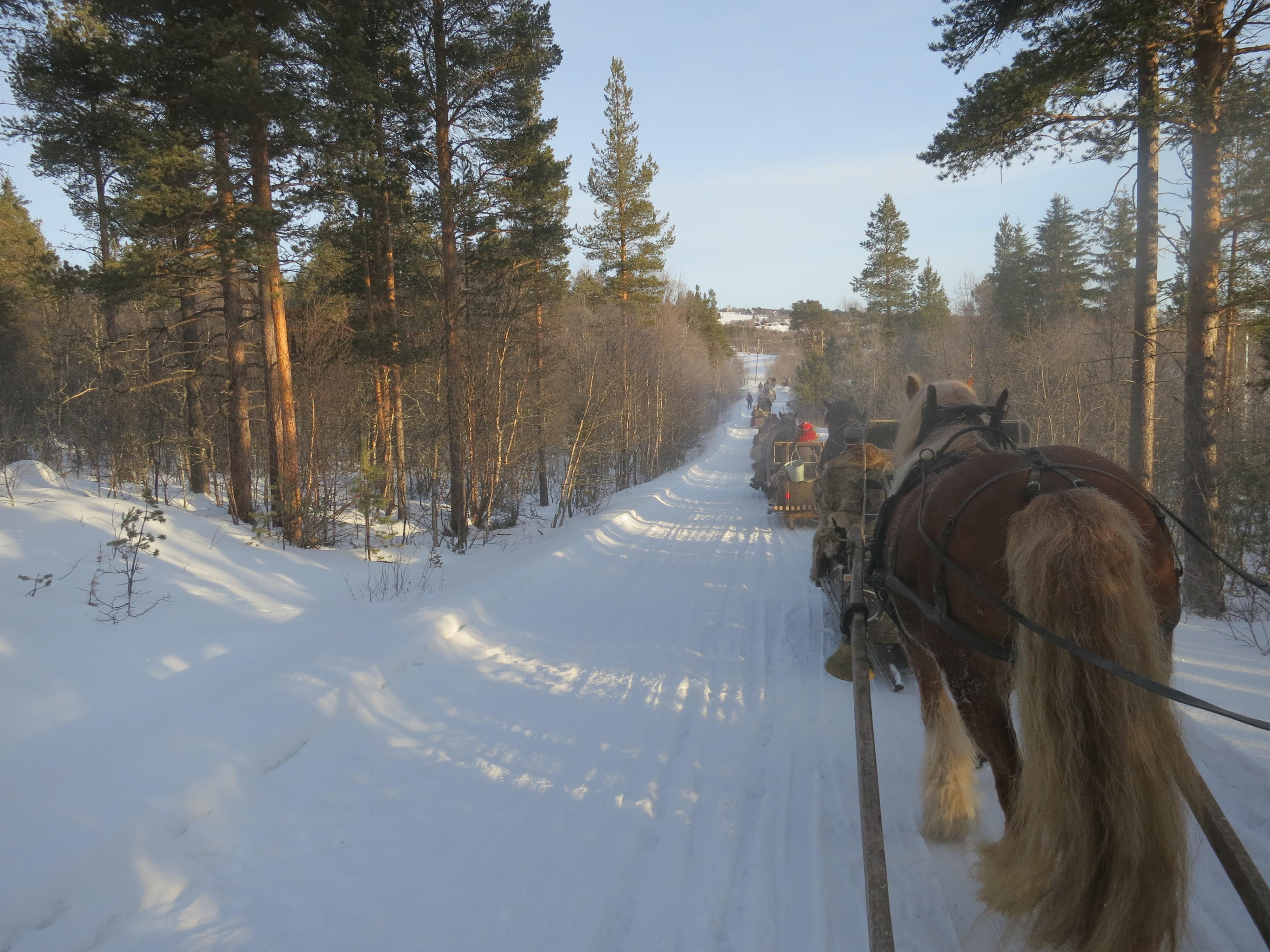 Lang rekke inn mot Galåen. Foto: Karine Bogsti