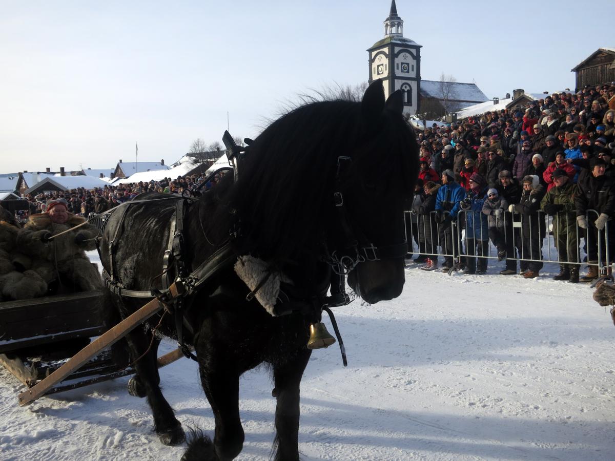 Hesten Molly med Erik Flagstad, Mikkel Dobloug og Ola Grønvold kjører inn på Malmplassen. Foto: Karine Bogsti